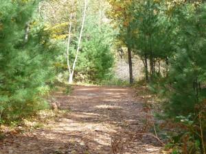 Cedar Brook Burial Ground pathway